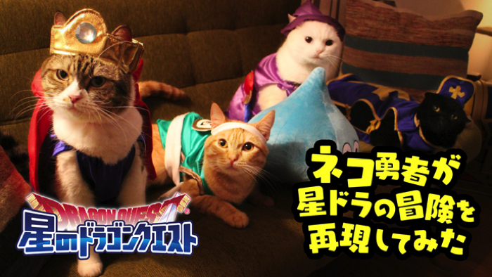 """Cat hero"" will travel the world! The WEB movie of ""Hoshino Dragon Quest"" was released!"