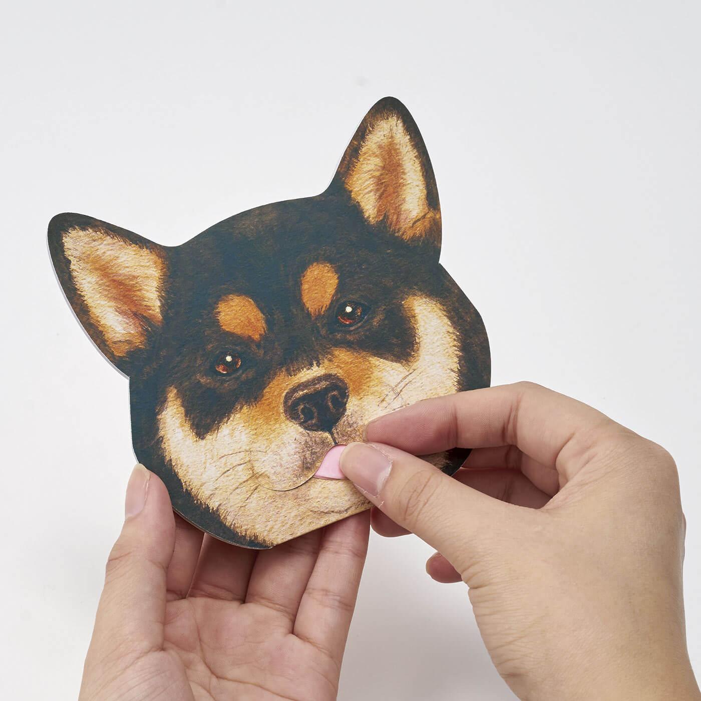 フェリシモ 柴犬2