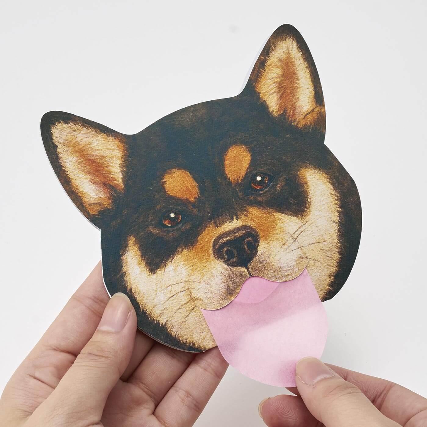 フェリシモ 柴犬3