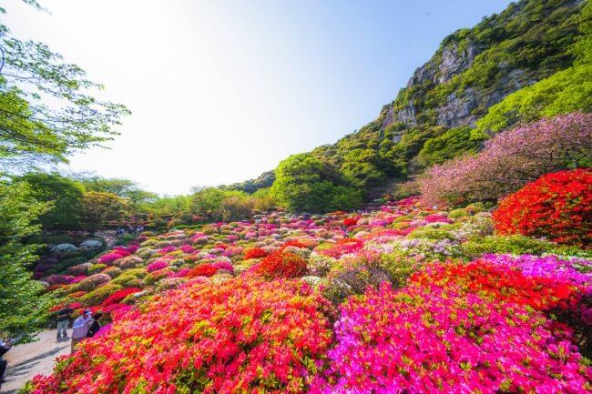 春季活動 佐賀「御船山樂園 花祭」