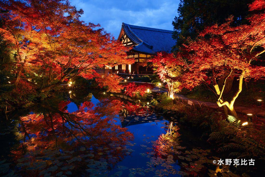 金戒光明寺 Konkaikomyoji kyoto 京都