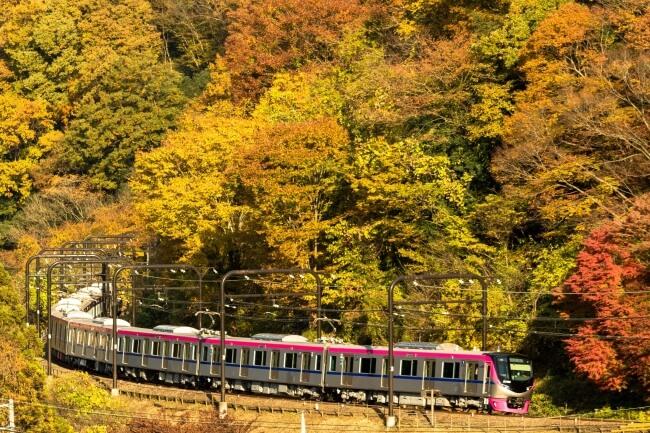 電車 train 高尾山 Mt.Takao Takaosan 新宿 shinjuku_1
