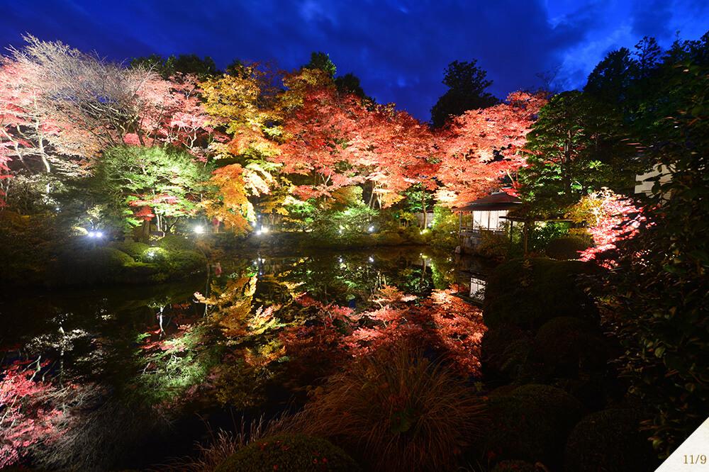 日光 輪王寺逍遥園 Shoyoen Gardens Nikko