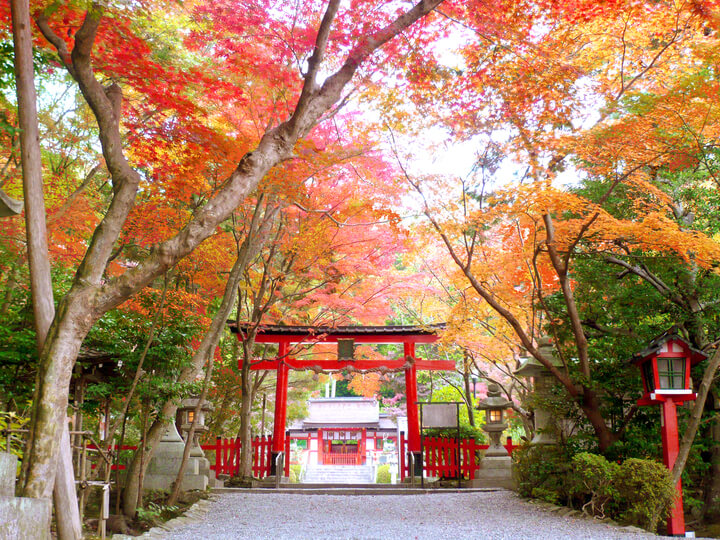 oharano-shrine%e3%80%80%e5%a4%a7%e5%8e%9f%e9%87%8e%e7%a5%9e%e7%a4%be2-2