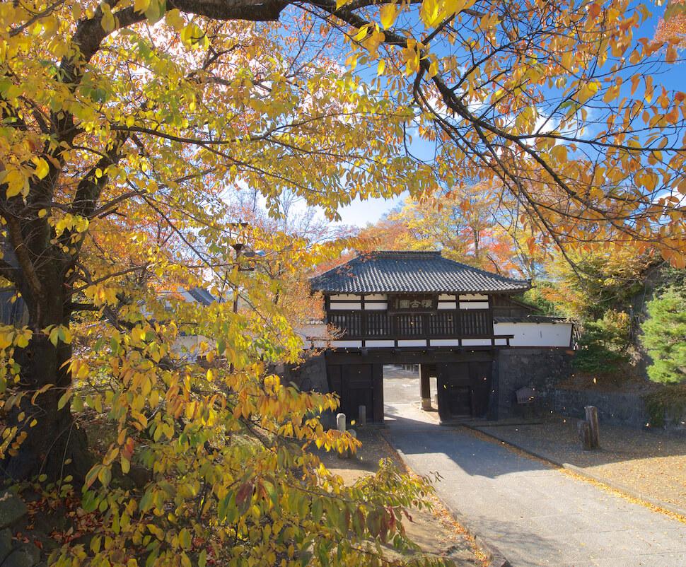 懐古園紅葉まつり Kaikoen momiji festival