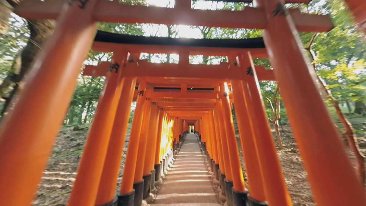 2.Fushimi Inari Taisha 伏見稲荷 copy