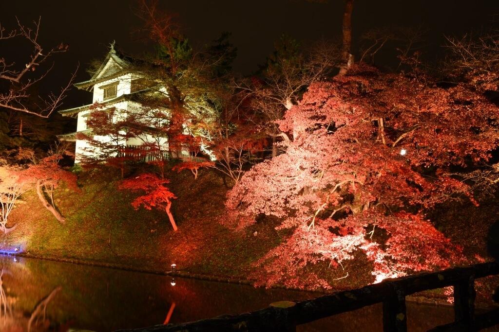青森「弘前城 菊と紅葉まつり」Aomori autumn colors 楓葉