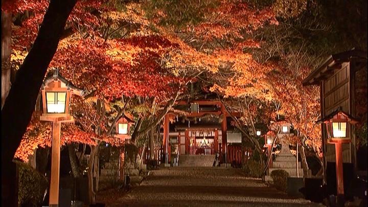 Oharano Shrine 大原野神社