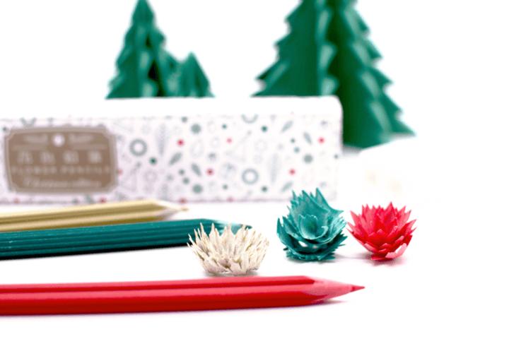 花色鉛筆: Christmas edition Colored pencil2