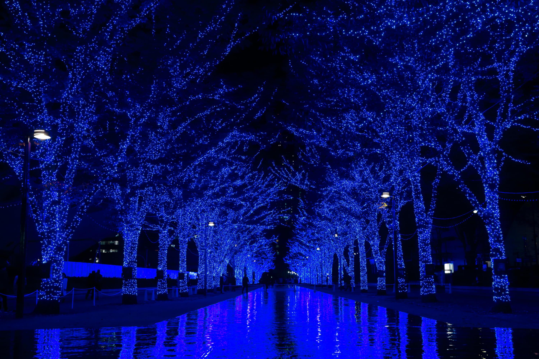 青の洞窟SHIBUYA aono doukutsu shibuya3