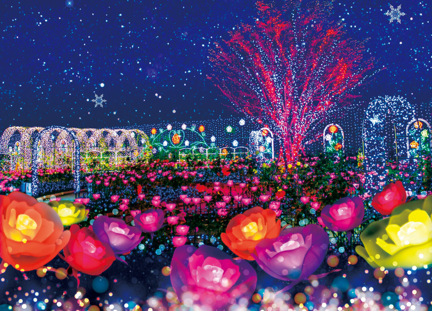 あしかがフラワーパーク ashikaga flower park illumination