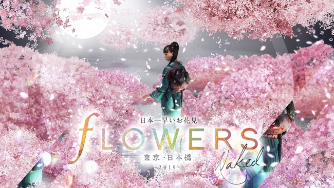 FLOWERS BY NAKED 2019 ー東京・日本橋ー nihonbashi 2