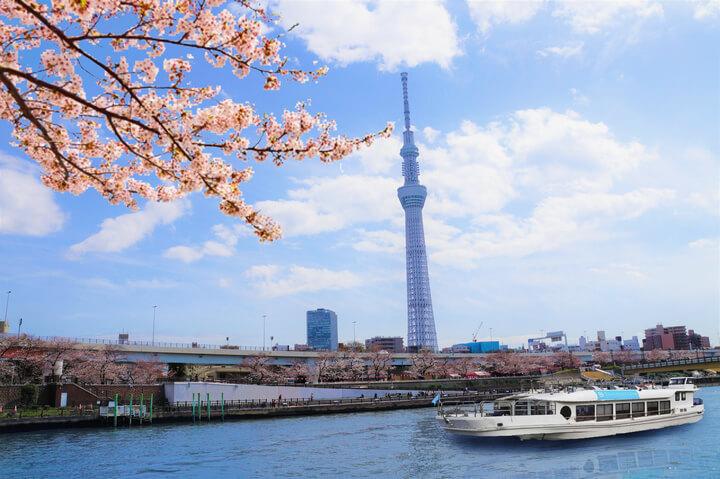 お花見CHANDON2019目黒川・隅田川 hanami meguro river sumida river2