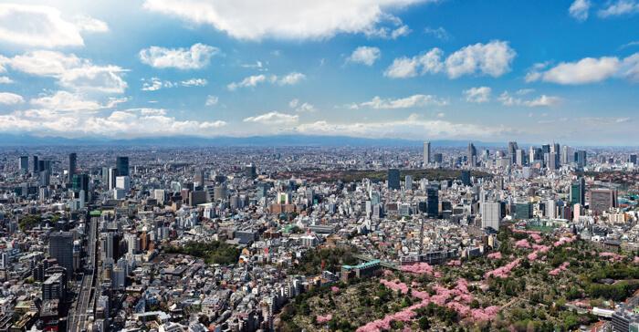 六本木ヒルズ roppongi hills sakura 東京シティビューから見た景色