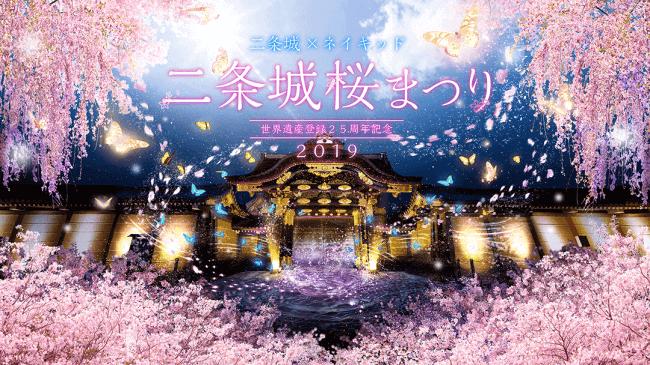 二条城桜まつり sakura Cherryblossoms Nijyo casthle festival_1