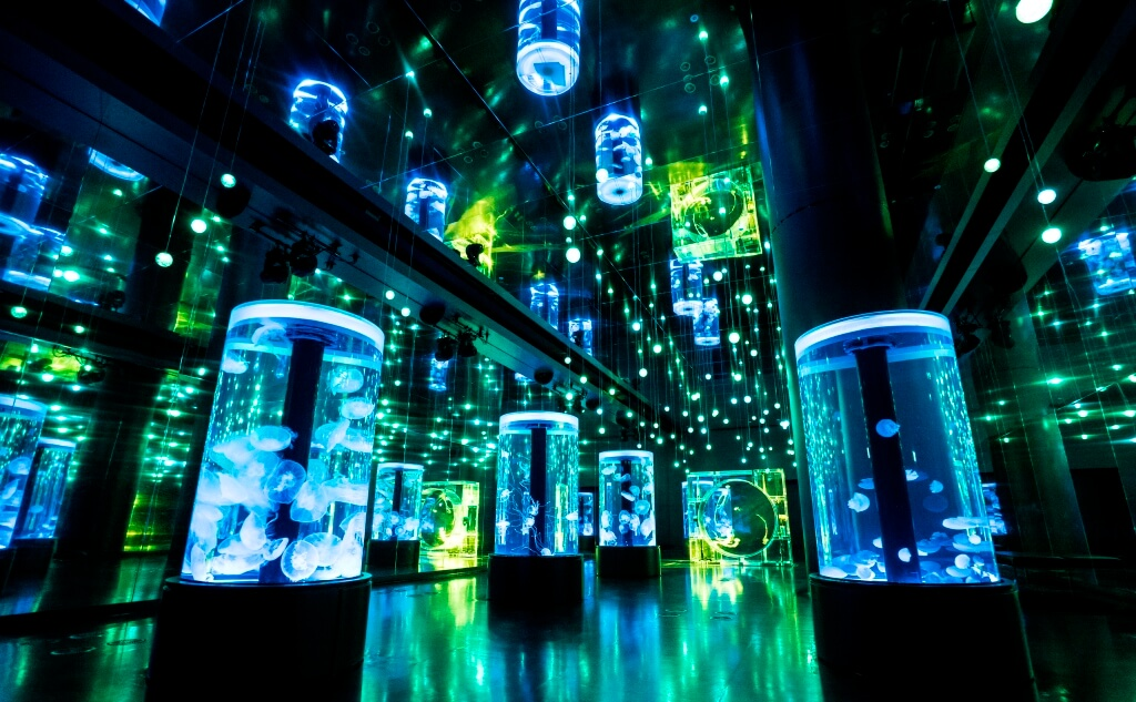 jellyfish-ramble-%e3%83%9e%e3%82%af%e3%82%bb%e3%83%ab-%e3%82%a2%e3%82%af%e3%82%a2%e3%83%91%e3%83%bc%e3%82%af%e5%93%81%e5%b7%9d-maxell-aqua-shinagawa-lower-aquarium-directed-by-naked%e3%83%bcbrand-ne-2