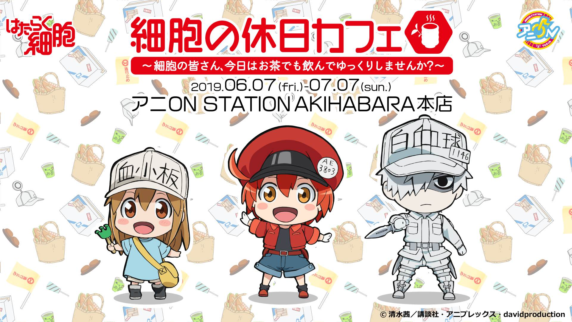 Cells at Work! Anime Themed Cafe to Open in Akihabara | MOSHI MOSHI
