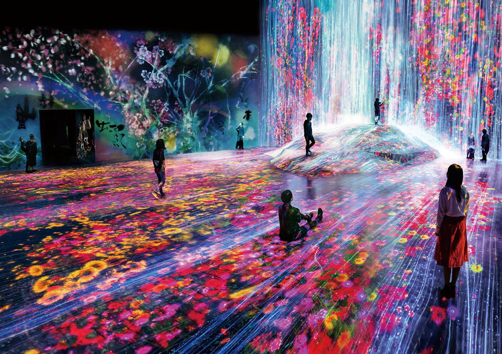 森ビル デジタルアート ミュージアム:エプソン チームラボボーダレス MORI Building DIGITAL ART MUSEUM EPSON teamLab Borderless Main_Borderlesswaorl_takihana_2_3_high hbsdhds