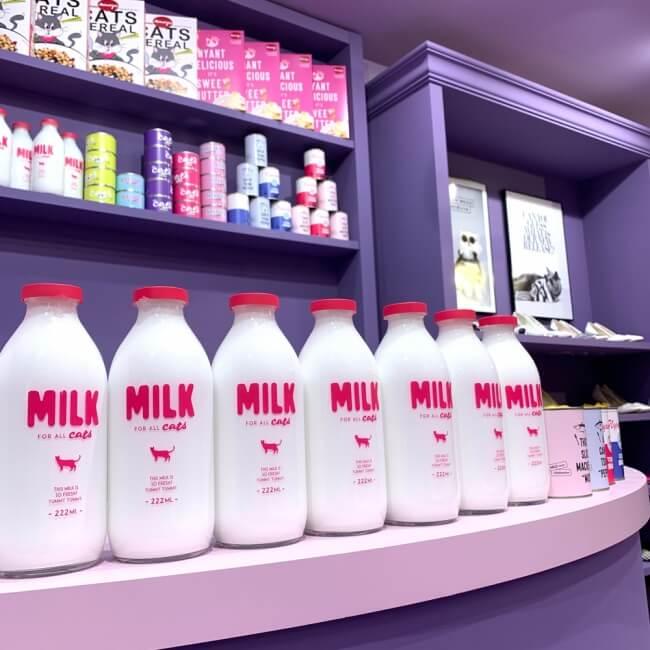 moreru-mignon%ef%bc%88%e3%83%a2%e3%83%ac%e3%83%ab%e3%83%9f%e3%83%8b%e3%83%a7%e3%83%b3%ef%bc%89%e6%b8%8b%e8%b0%b7109-shibuya-%e3%83%95%e3%82%9a%e3%83%aa_milk-2