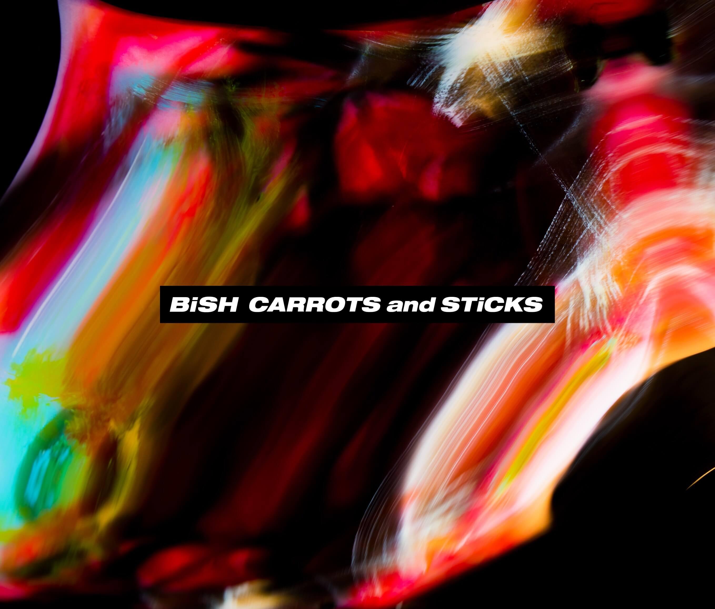bish-51551_bish_cands_2cddvd