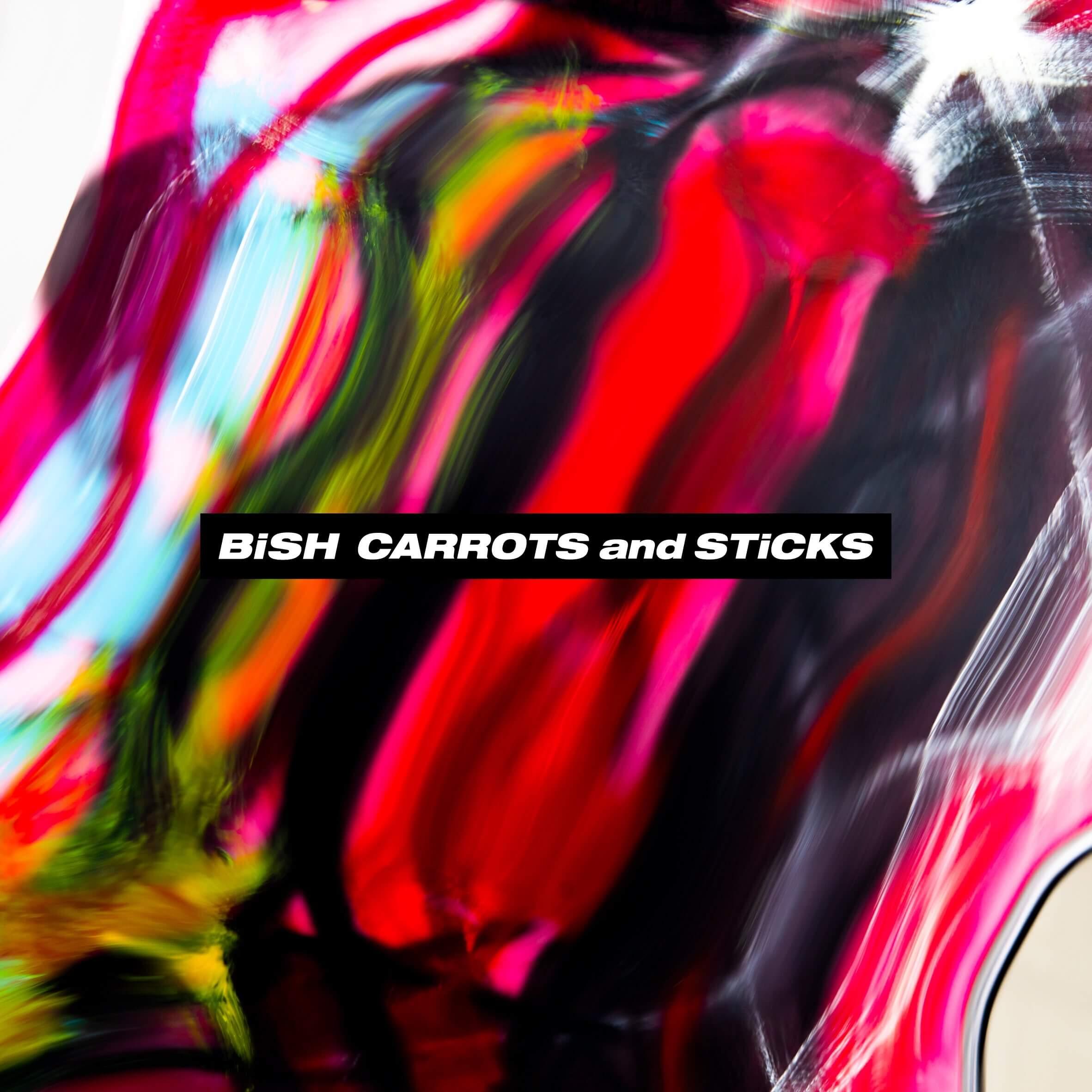 bish-51551_bish_cands_cdonly
