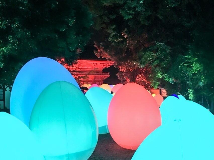 京都 世界遺産 Kyoyo 下鴨神社 Shimogamo Shrine teamlabチームラボ _糺の森 5