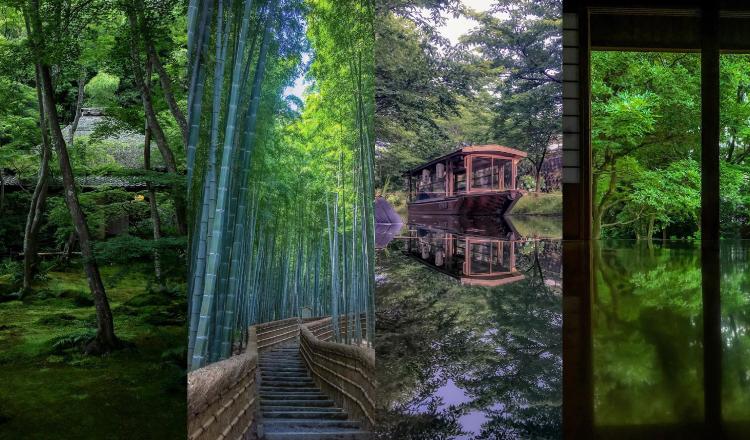 京都 新緑スポット Kyoto-spot-Green-Travel-sightseeing-京都観光