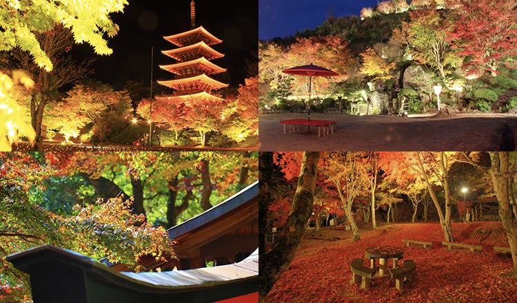 京都紅葉バナー