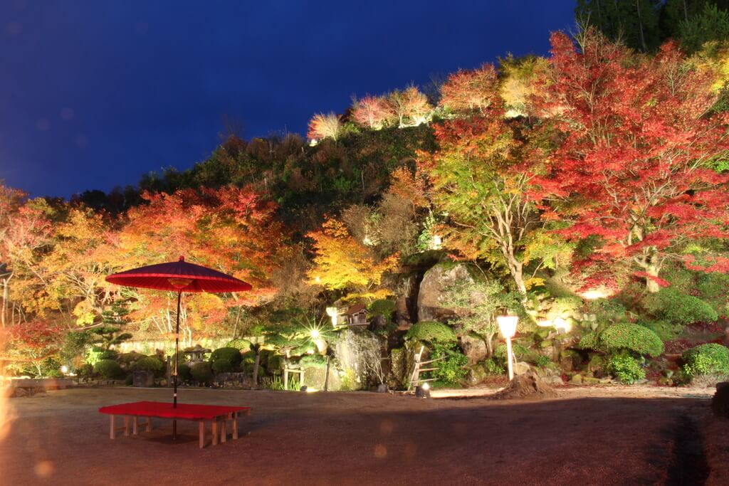 %e4%ba%ac%e9%83%bd-%e7%b4%85%e8%91%89-kyoto-autumn-leaves-%e6%85%88%e5%be%b3%e9%99%a22-2