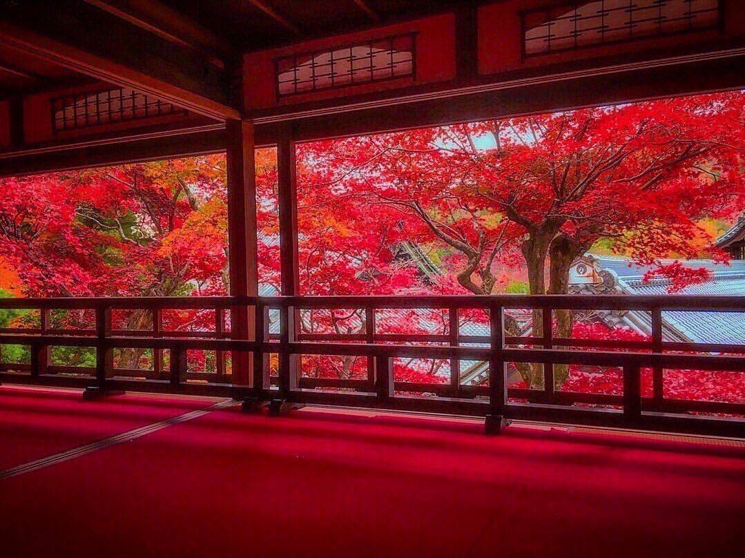 柳谷観音 Yokokuji Kyoto