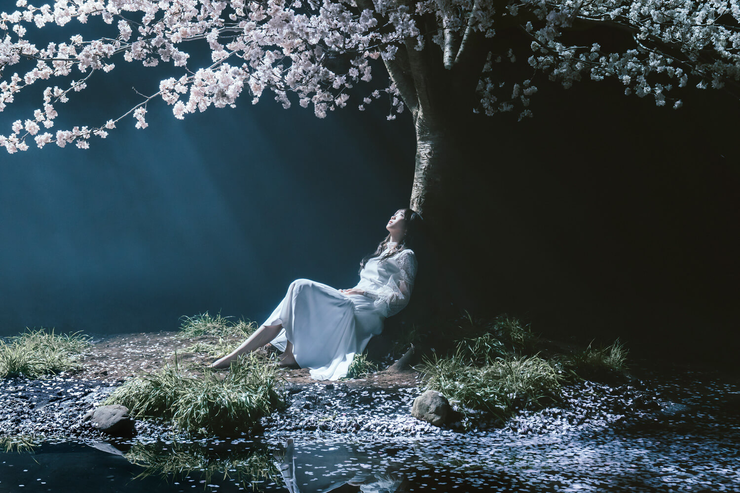Aimer S Fate Stay Night Heaven S Feel Iii Spring Song Main Theme