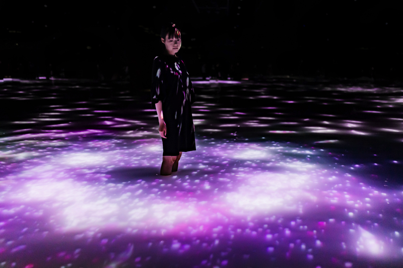 Team lab planets Toyosu 豊洲 チームラボプラネッツ TOKYO 東京 sakura Cherry blossoms 桜 Drawing on the Water Surface Created by the Dance of Koi and People – Infinity_03