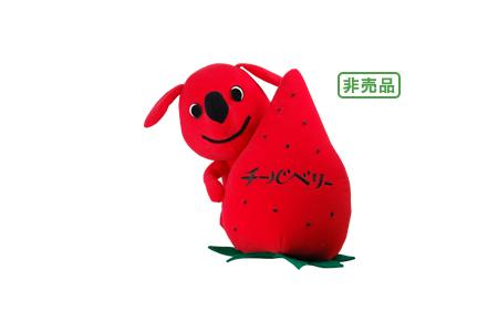 Chiba Strawberries千葉県苺_千葉草莓_3