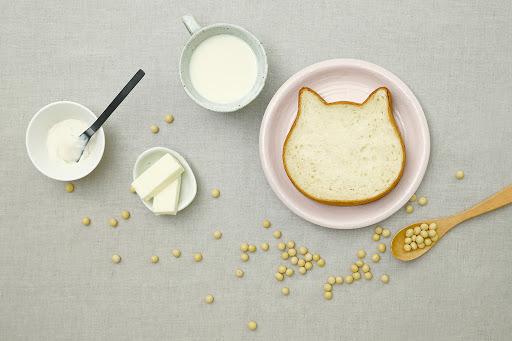 %e3%81%ad%e3%81%93%e5%bd%a2%e3%81%ae%e3%82%b9%e3%82%a4%e3%83%bc%e3%83%84-cat-shaped-desserts-%e8%b2%93%e5%bd%a2%e7%94%9c%e9%bb%9e11-2