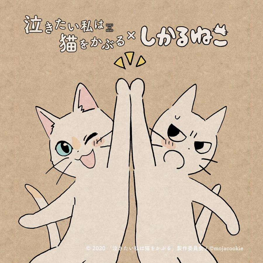 Netflix 泣きたい私は猫をかぶる 想哭的我戴上了貓的面具 Nakitai Watashiwa Nekowo Kaburu しかるねこ