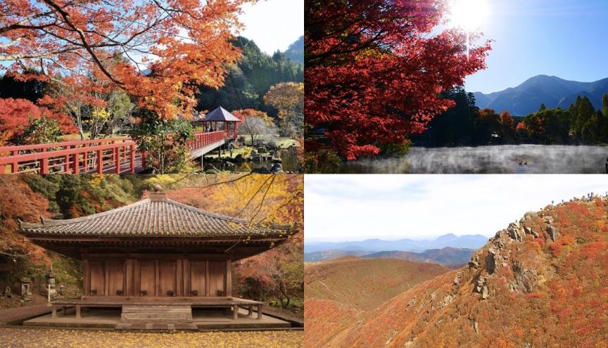 紅葉絶景スポット 6選-大分県-Autumn-leaves-scenery-spots-in-Oita-prefecture-大分県的紅葉絶景