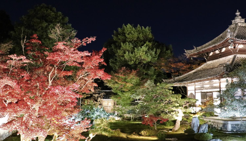 鹿王院-ライトアップ-Rokuo-in-Temple-light-up-光雕投影