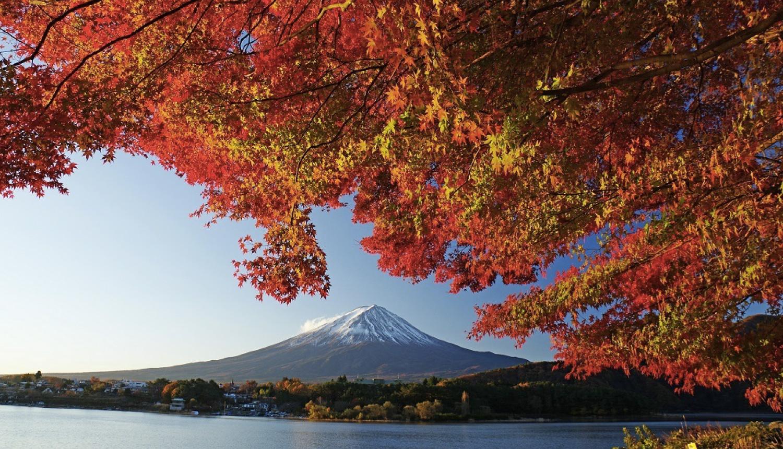 第22回-富士河口湖紅葉まつり-Autumn-Leaves-Yamanashi-日本旅行-