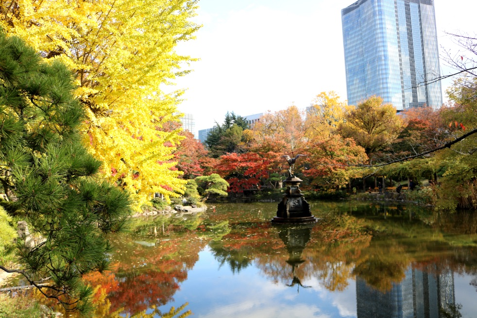 千代田区観光 紅葉名所 Tokyo autumn leaves 千代田區觀光秋葉名勝