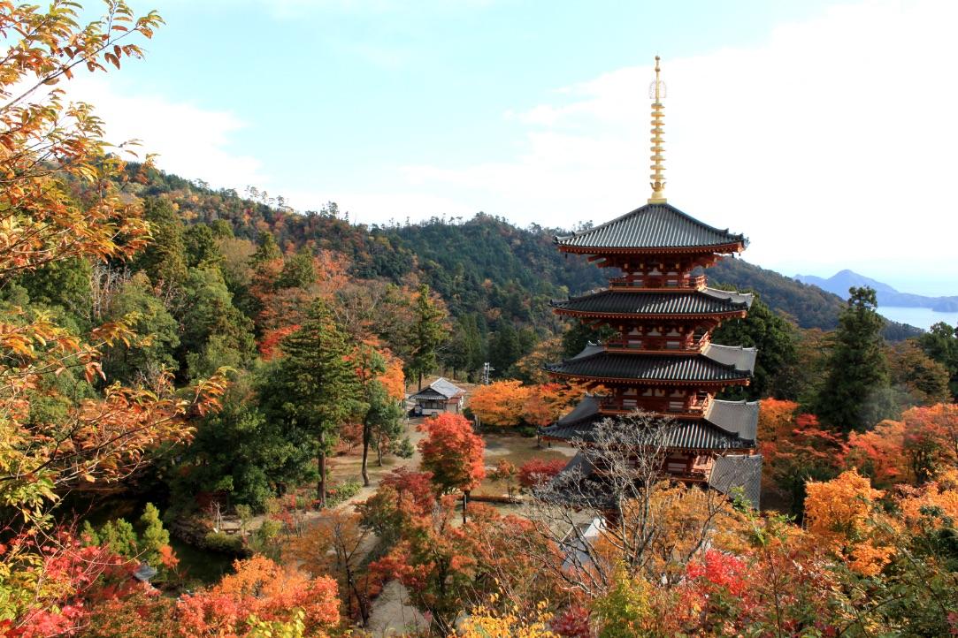 京都 紅葉 Kyoto Autumn Leaves 京都旅行2