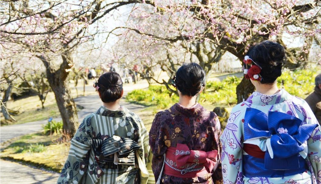 小田原フラワーガーデン-渓流の梅園-Odawara-Flower-Garden-日本旅行0