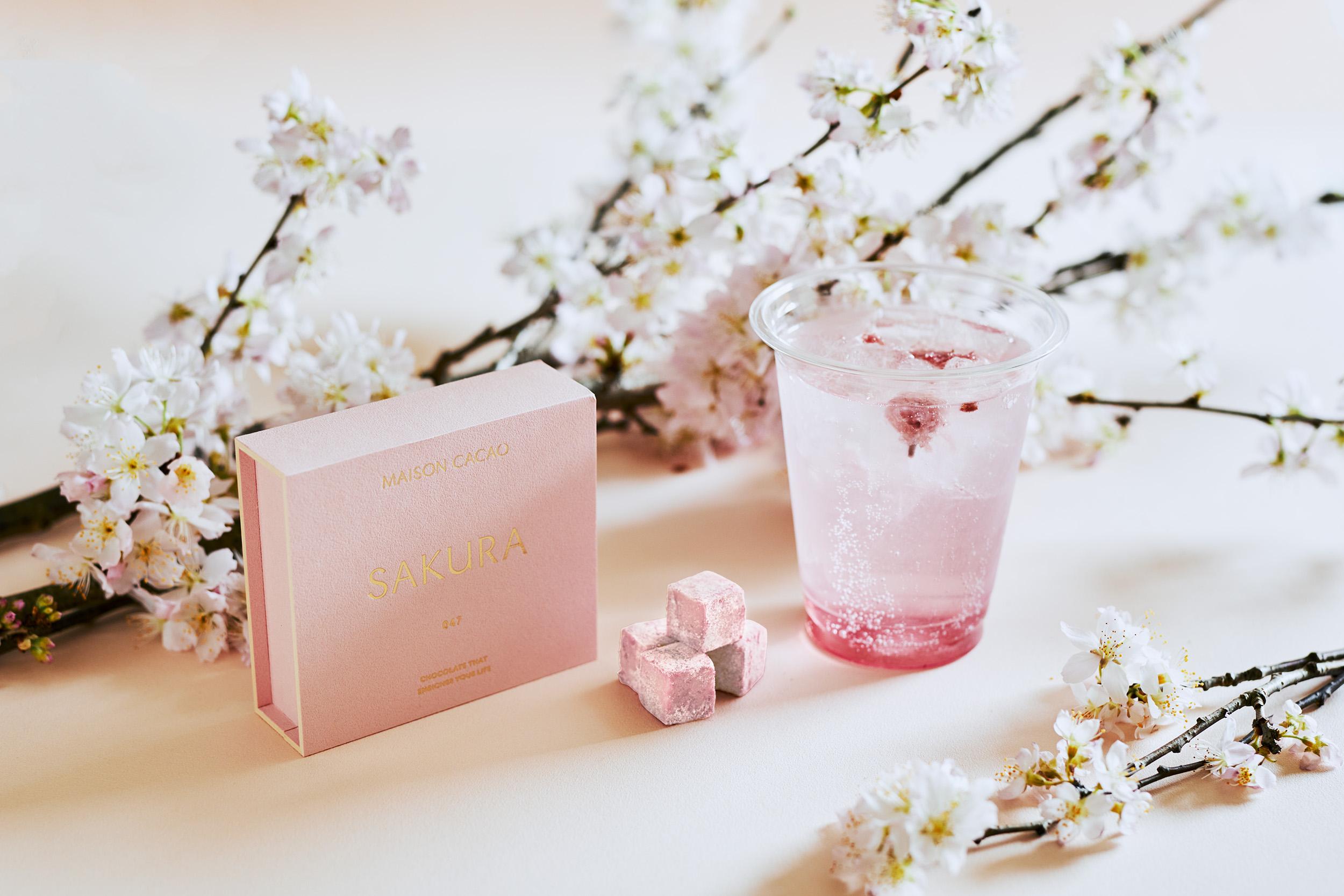 アロマ生チョコレート専門店「MAISON CACAO」「四季とメゾン」