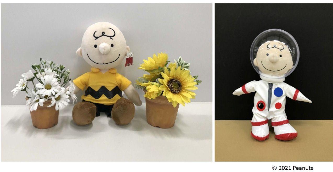peanuts-look-to-tomorrow5-2