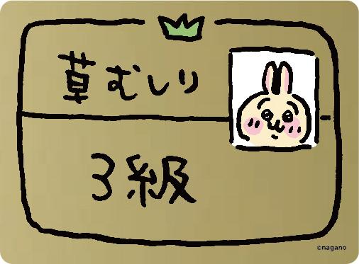 sub3-263-2